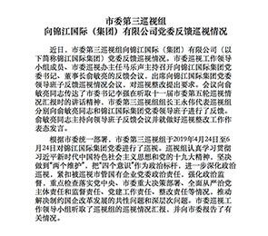 市委第三巡视组向锦江国际(集团)有限公司党委反馈巡视情况